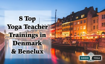 yoga training schools in denmark and the benelux