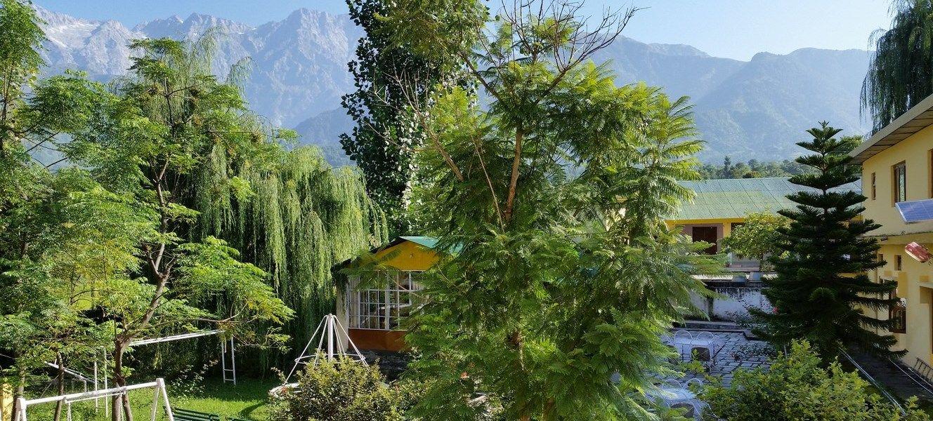 pops resort palampur dharamsala