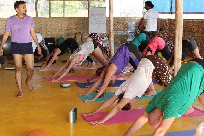 best yoga teacher training programs india
