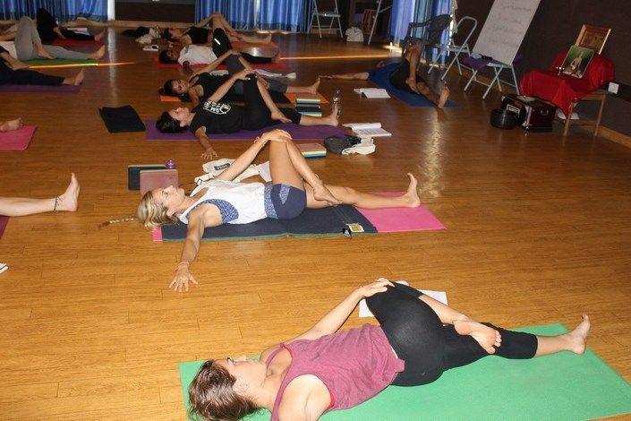 multi style yoga teacher training india