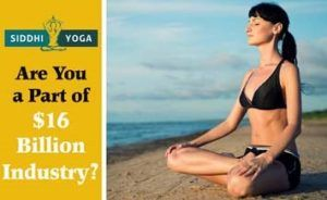 siddhi yoga blog our yogis share their wisdom on yoga here