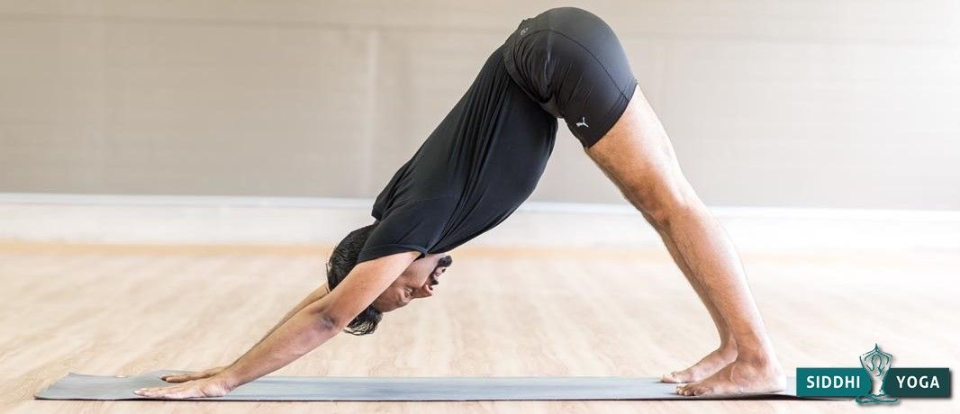 Adho Mukha Svanasana (Downward-Facing Dog)