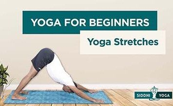 yoga stretches for beginners