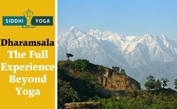 瑜伽之外的达兰萨拉