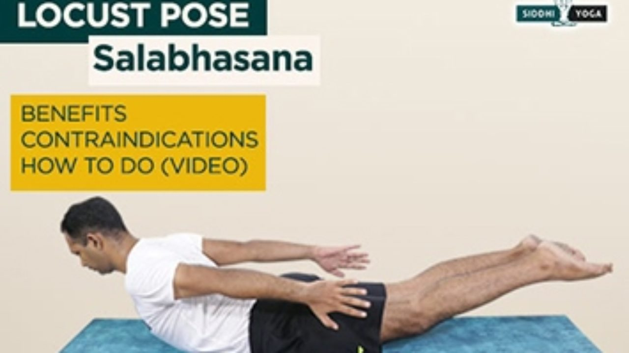 Salabhasana Procedure