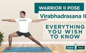 virabhadrasana warrior ii pose