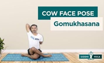 gomukhasana cow face pose benefits how to do