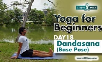 dandasana staff pose or base pose benefits how to do