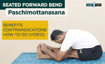 paschimottanasana seated forward bend