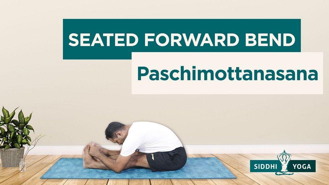 seated forward bend paschimottanasana