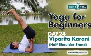 viparita karani half shoulder stand