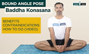 baddha konasana bound angle pose