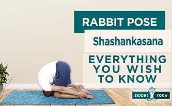 shashankasana rabbit moon hare pose