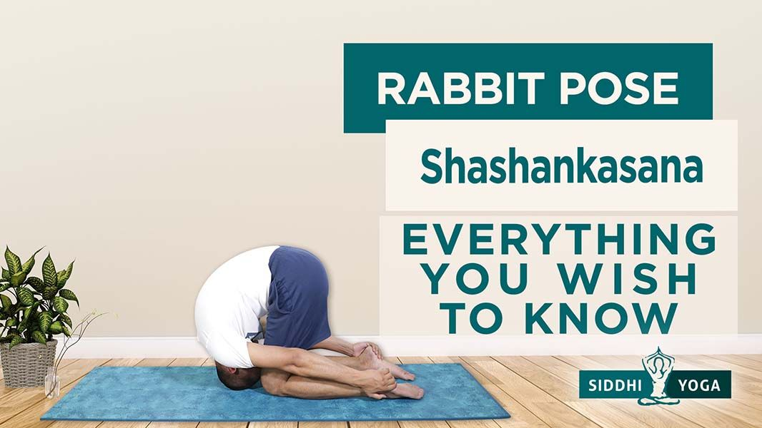 shashankasana rabbit moon hare pose