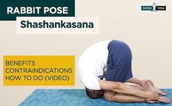 shashankasana rabbit pose