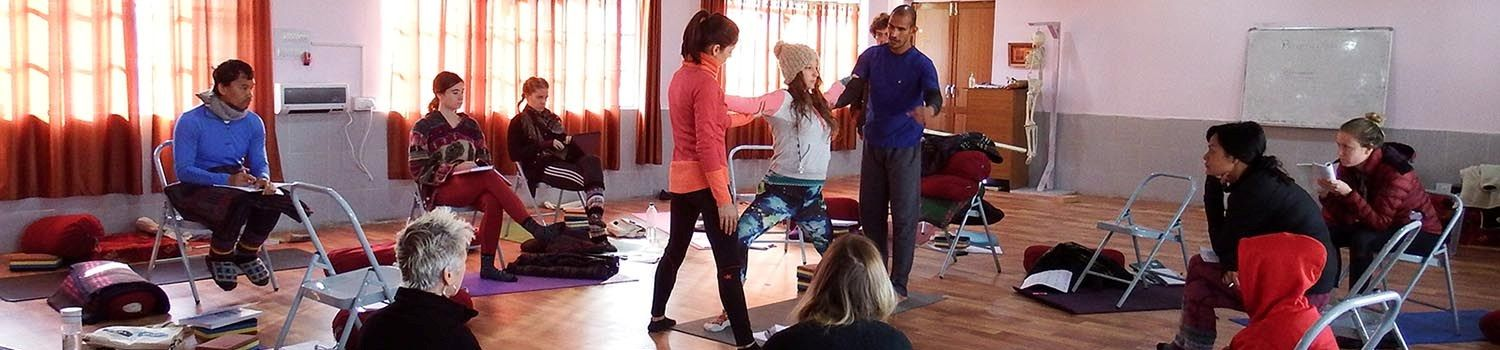 siddhi yoga mentorship program