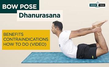 dhanurasana bow pose benefits how to do  contraindications
