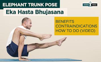 eka hasta bhujasana elephant trunk pose