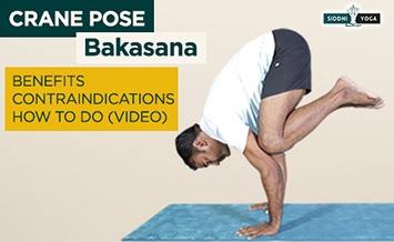 bakasana crane pose