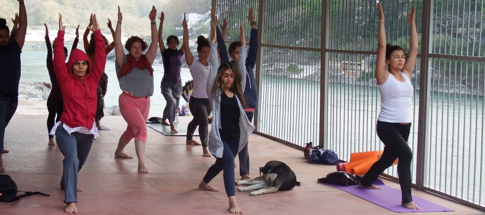 hatha yoga teacher training certificate rishikesh