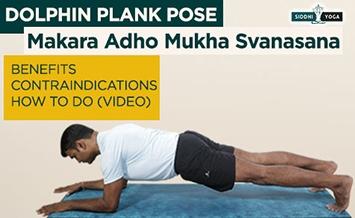 makara adho mukha svanasana dolphin plank pose