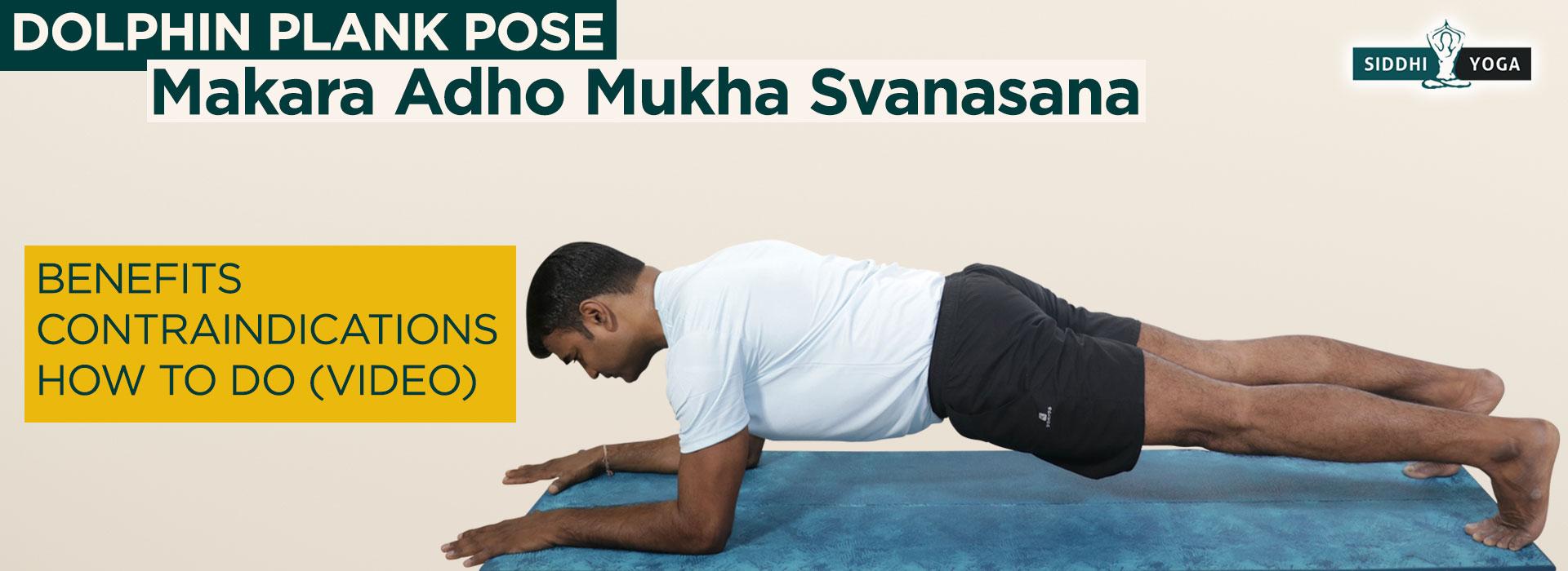 Makara Adho Mukha Svanasana Dolphin Plank Pose How To Do Benefits