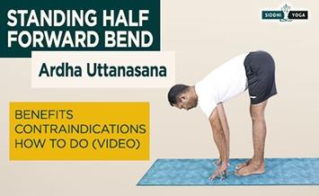 ardha uttanasana standing half forward bend