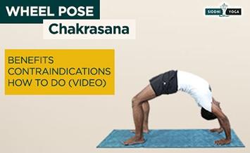 chakrasana wheel pose