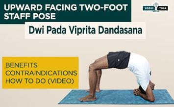 dwi pada viprita dandasana upward facing two foot staff pose