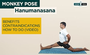 hanumanasana monkey pose