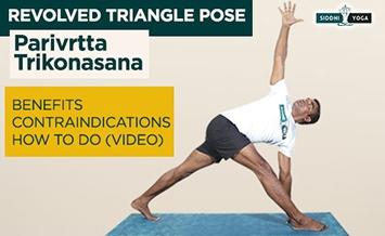 parivrtta trikonasana revolved triangle pose