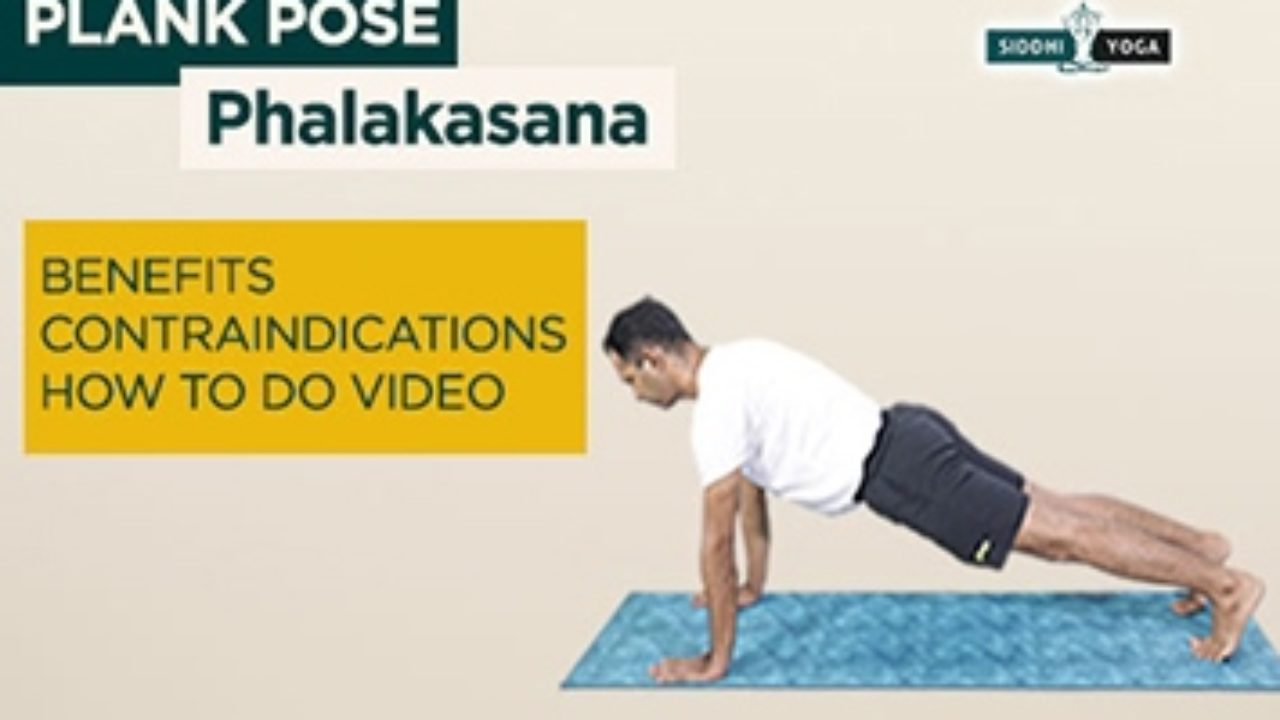Phalakasana Plank Pose Benefits How To Do Contraindications