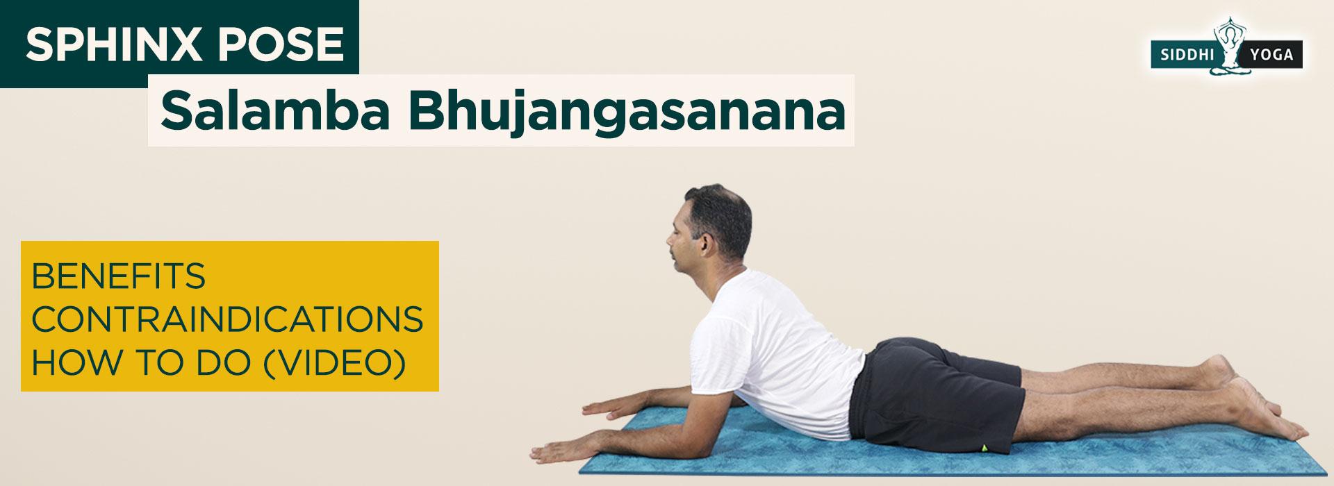 Salamba Bhujangasana (Sphinx Pose) Benefits