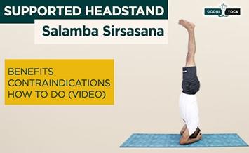 salamba sirsasana supported headstand