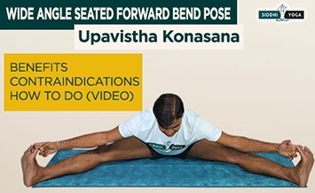 upavistha konasana wide angle seated forward bend pose