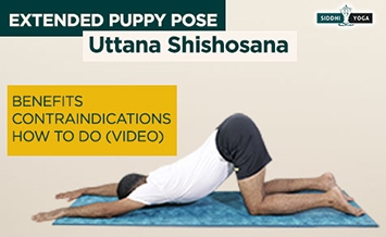 uttana shishosana extended puppy pose