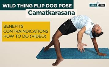wild thing flip dog pose