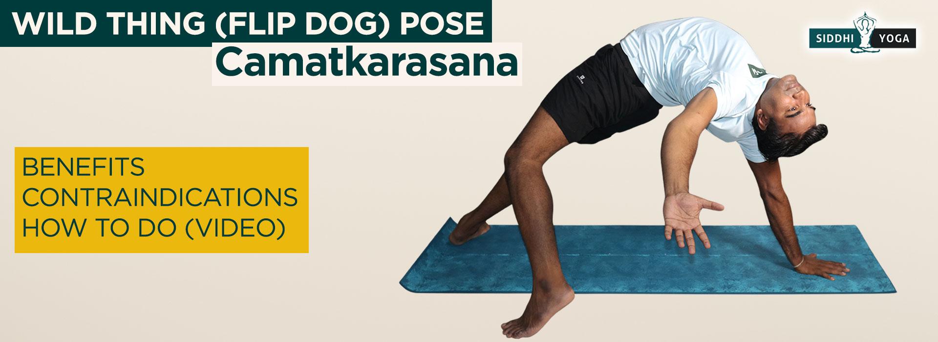 Camatkarasana (Flip Dog or Wild Thing Pose) Benefits