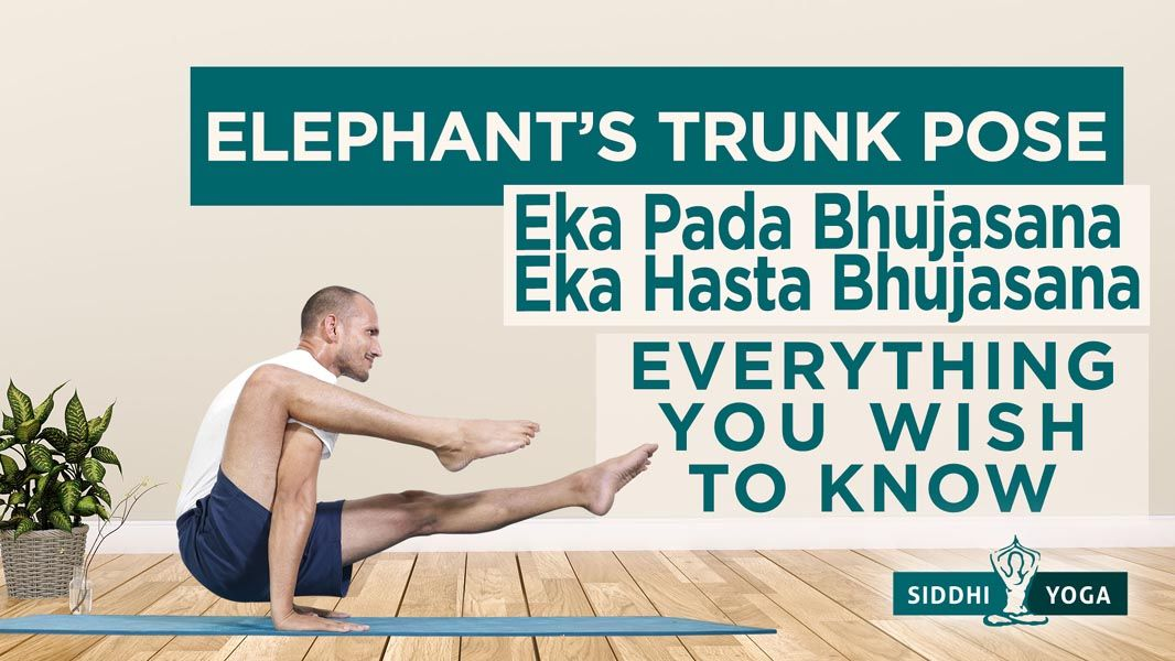Eka Hasta Bhujasana (Elephant Trunk Pose)