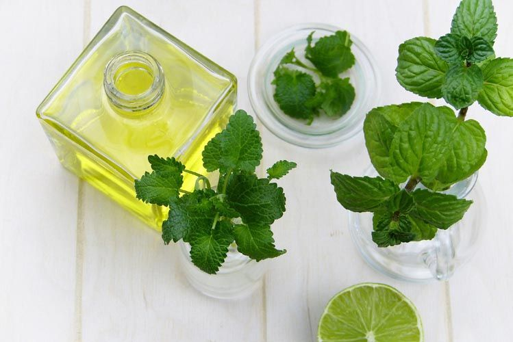 spearmint soothing muscles