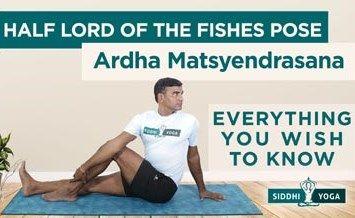 half lord of the fishes pose ardha matsyendrasana banner