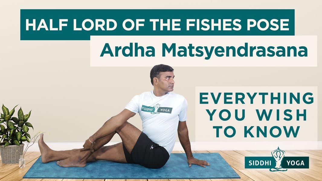 half lord of the fishes pose ardha matsyendrasana