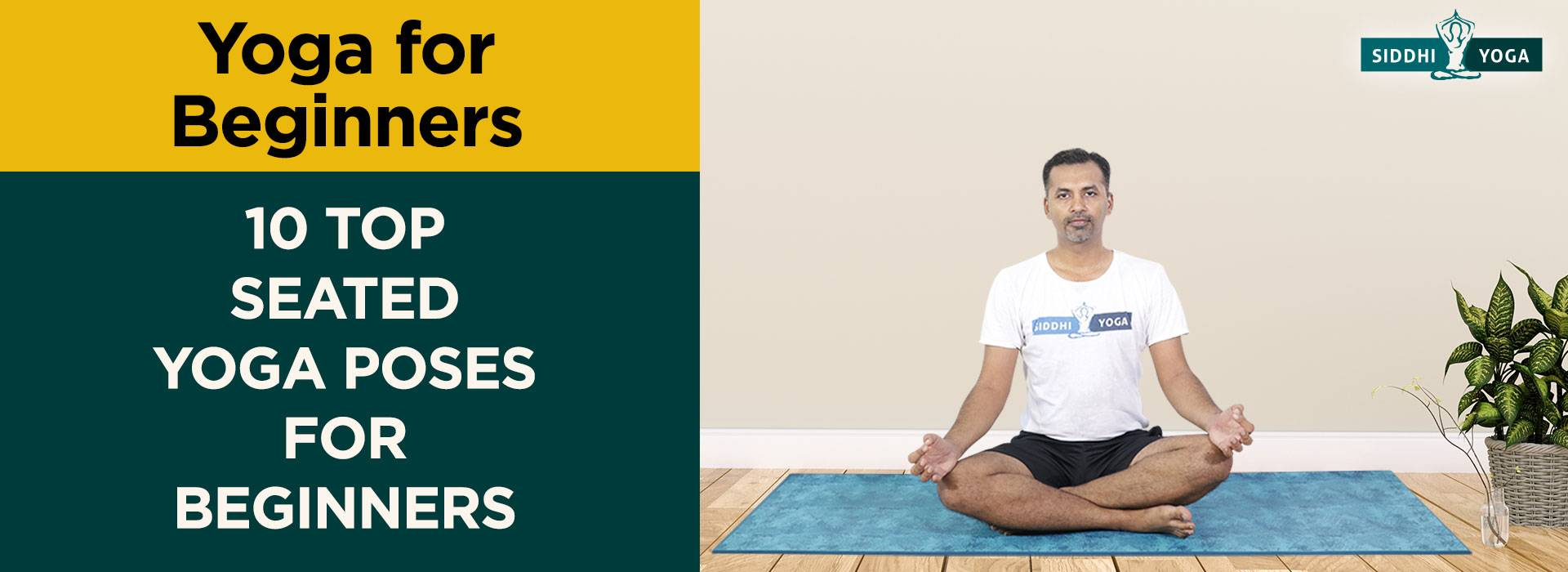 50 Top Seated Yoga Poses For Beginners  Siddhi Yoga