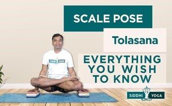 scale pose tolasana
