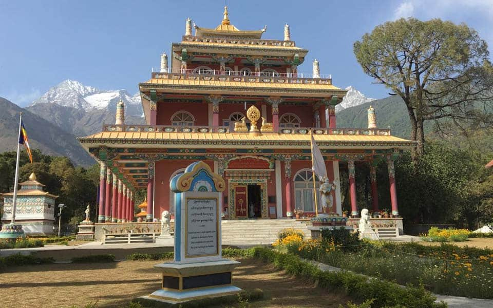 dharamsala india yoga teacher training