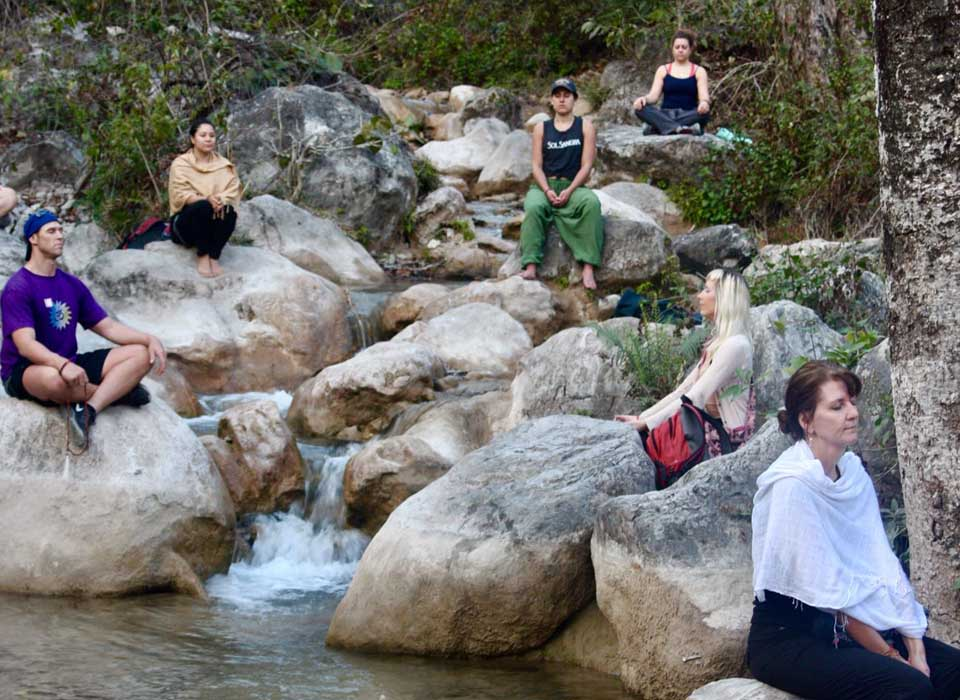 rishikesh ashram yoga teacher training