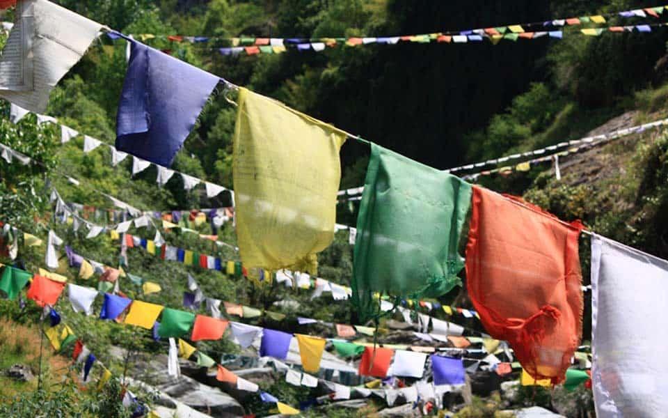 yoga retreat dharamsala