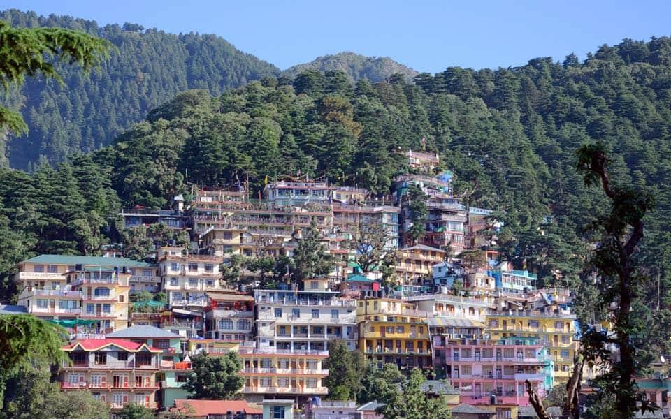 yoga teacher training india dharamsala