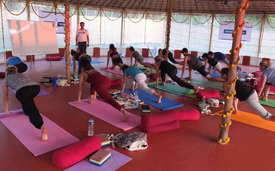 yoga teachers india