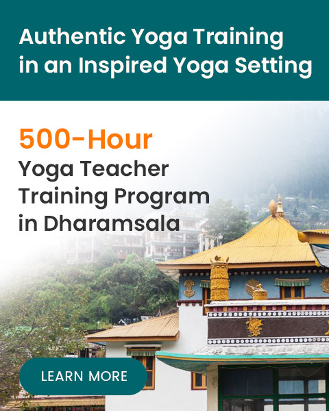 500-Hour Yoga teacher Training in Dharamsala